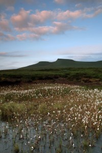 Golden Hour Photography - Evening light on Pen y Fan in the Brecon Beacons